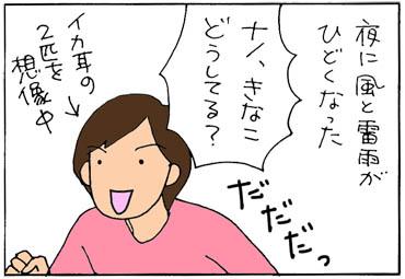 arashinoyoru-1.jpg