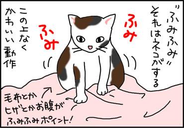 fumifumi-1.jpg
