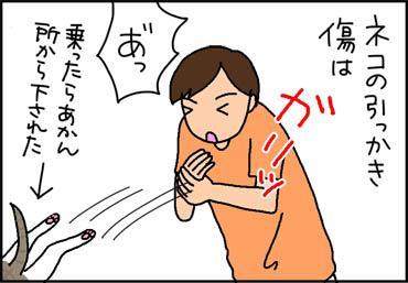 hikkakikizu-1.jpg