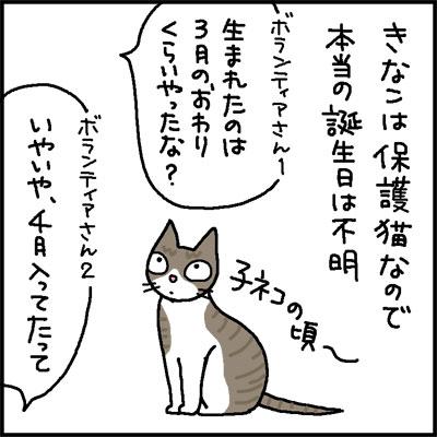kinako2sai-1.jpg