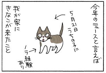 kinakokita-1.jpg