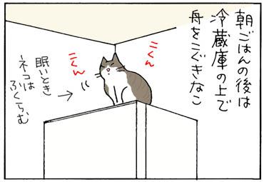 kinakorakka-1.jpg