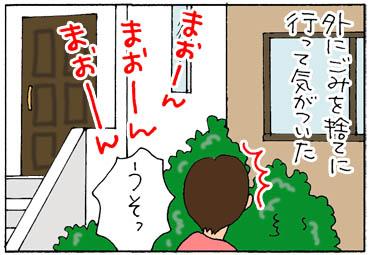 marukikoe-1.jpg