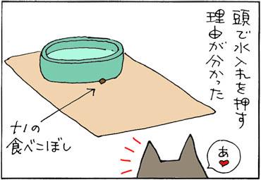 mizuirenowake-1.jpg