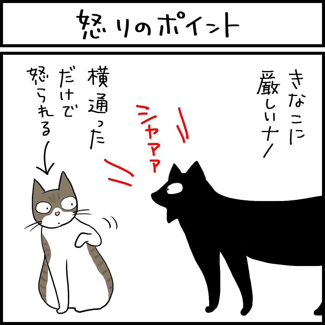 怒りのポイント-1.png
