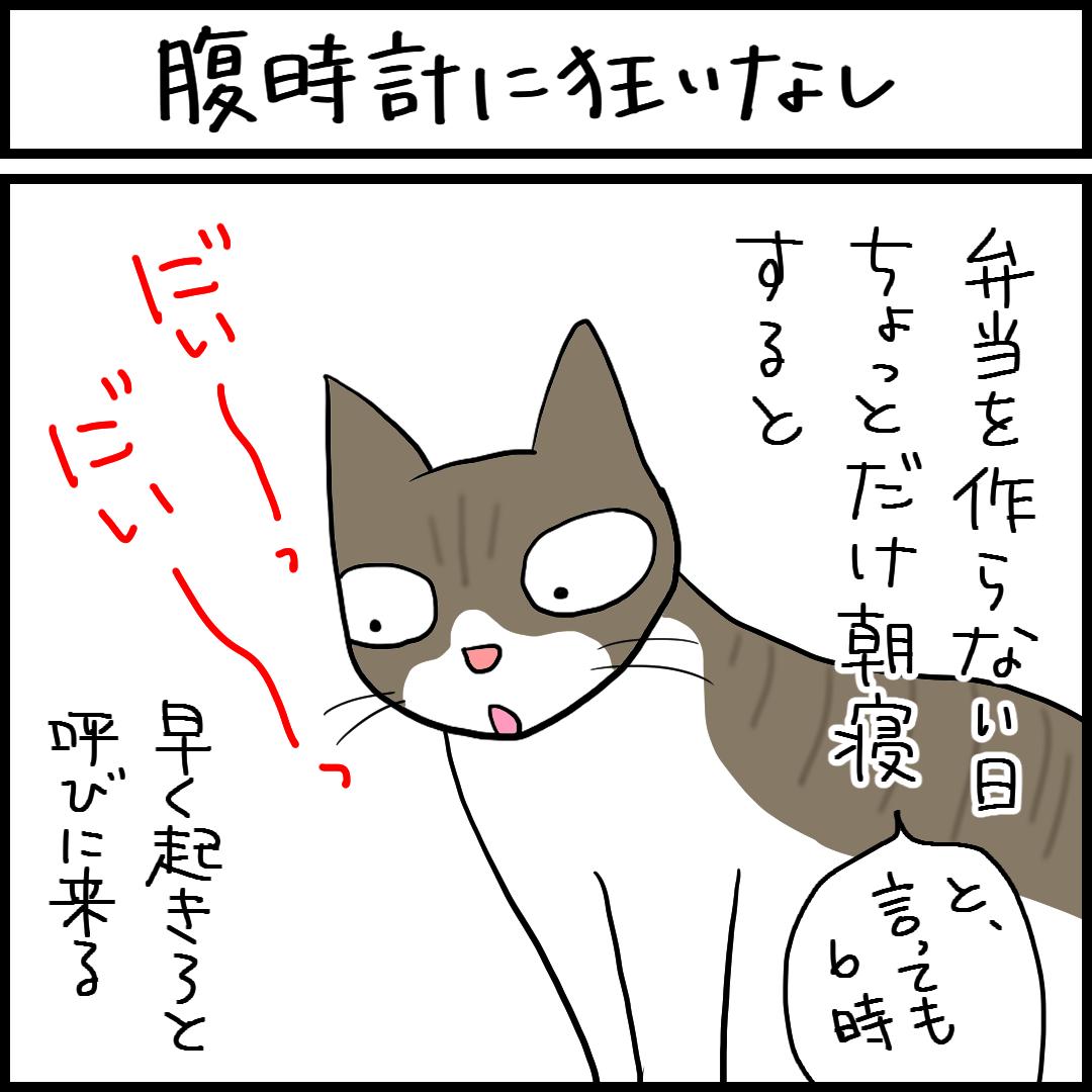 目覚まし-1.png