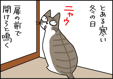 samuihi-1.jpg